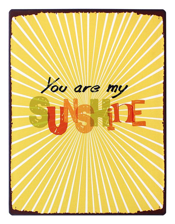 em3868 you are my sunshine rustiek tekst bord cadeau kado online metaal deco decoratie
