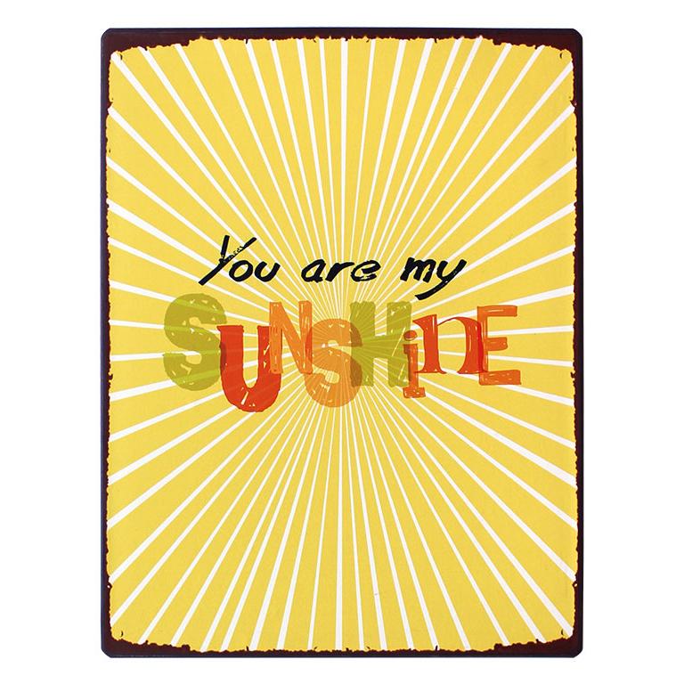 em3868-you-are-my-sunshine-rustiek-tekst-bord-cadeau-kado-online-metaal-deco-decoratie v